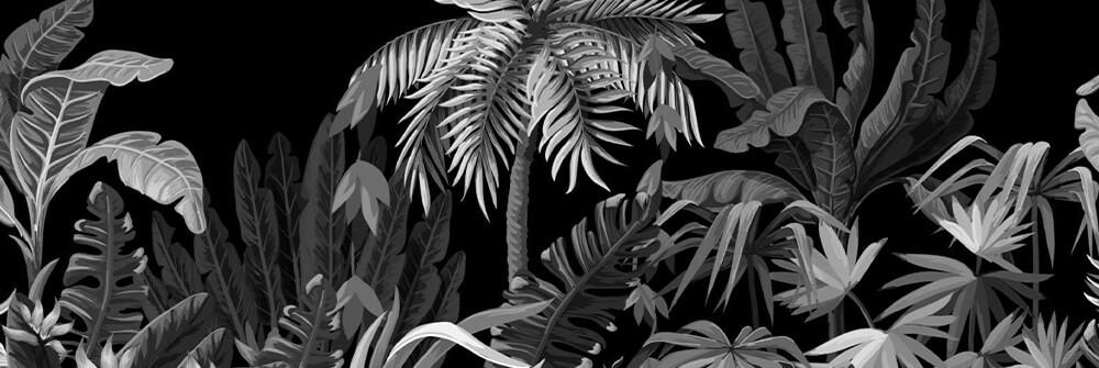 Dschungel-Tapete in Schwarz-Weiß online bestellen
