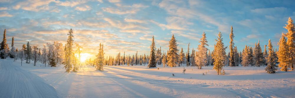 Fototapete mit Winterlandschaft
