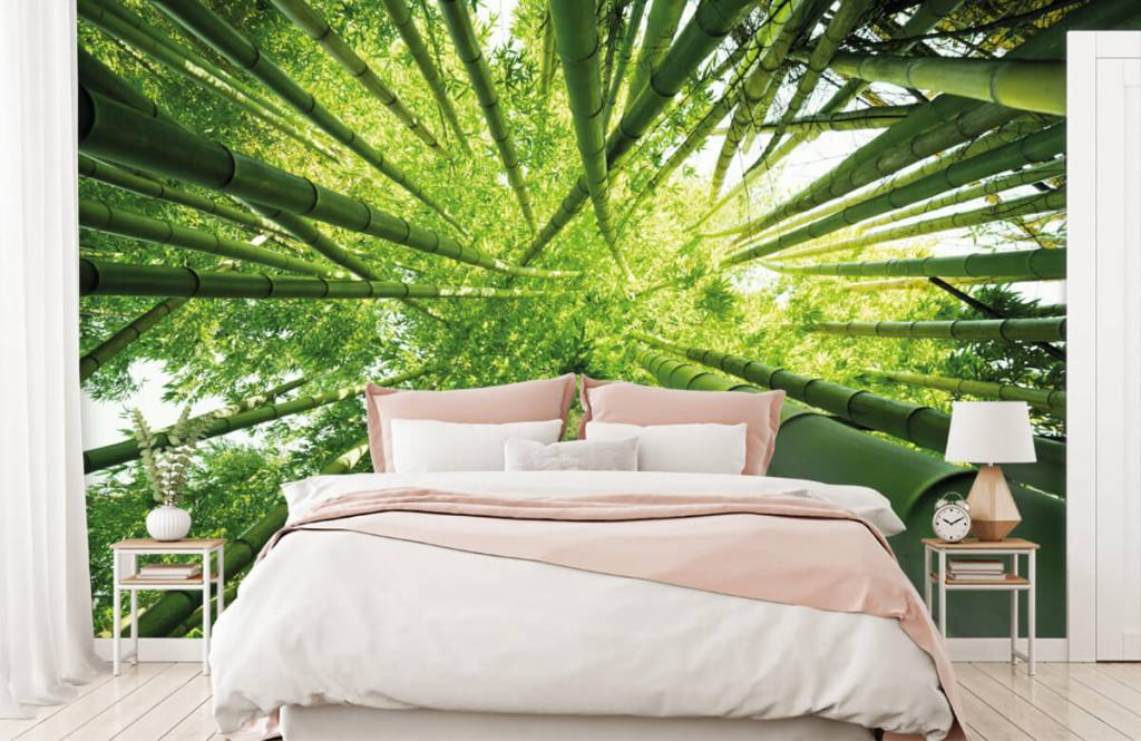 Wald Tapete - Bambus - Flur 2