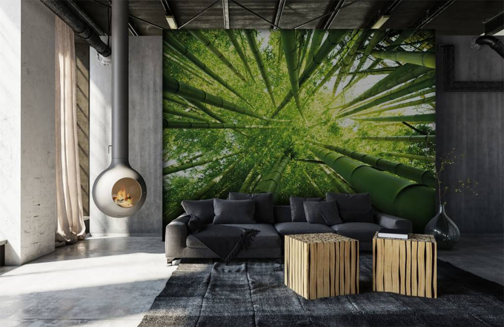 Wald Tapete - Bambus - Flur 6