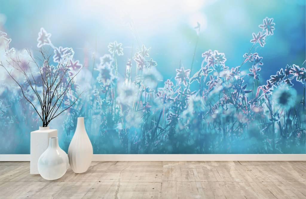 Blumenfelder - Frühling - Schlafzimmer 1