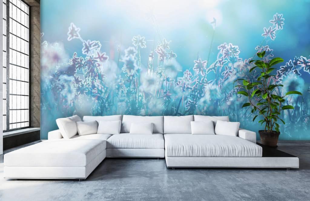 Blumenfelder - Frühling - Schlafzimmer 6
