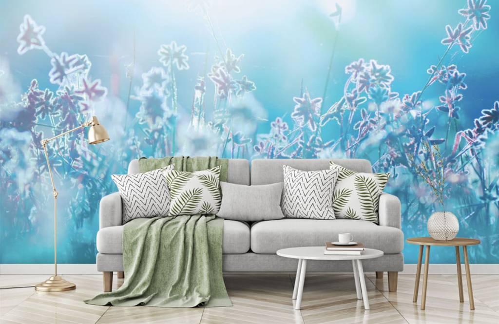 Blumenfelder - Frühling - Schlafzimmer 8