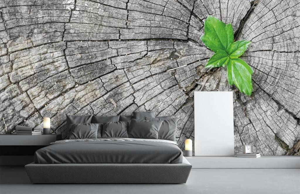 Holz Tapete - Baumstamm - Schlafzimmer 5