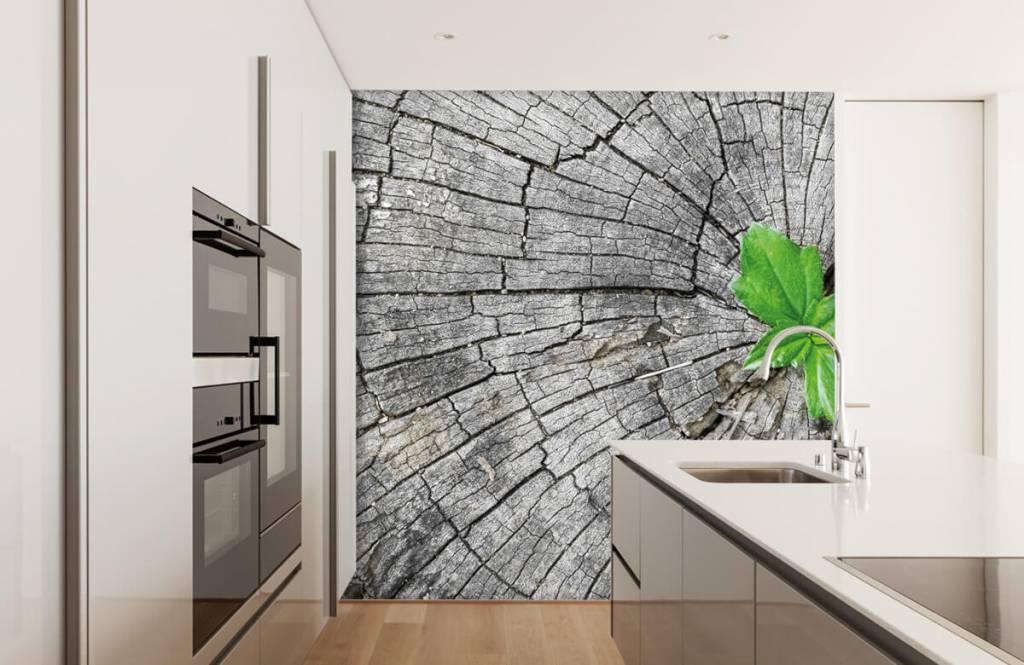 Holz Tapete - Baumstamm - Schlafzimmer 6