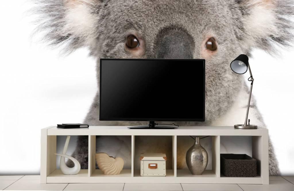 Andere - Koala - Kinderzimmer 4