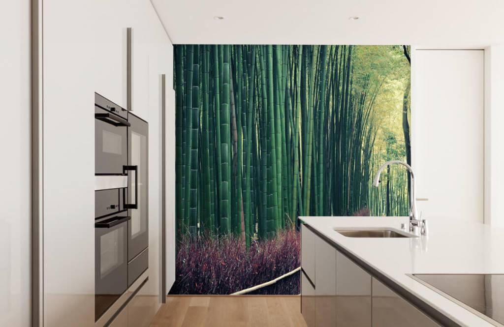 Wald Tapete - Bambuswald - Eingang 3