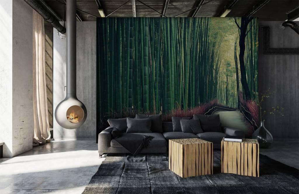Wald Tapete - Bambuswald - Eingang 6