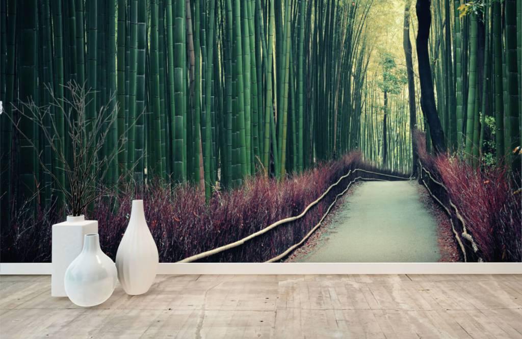 Wald Tapete - Bambuswald - Eingang 8
