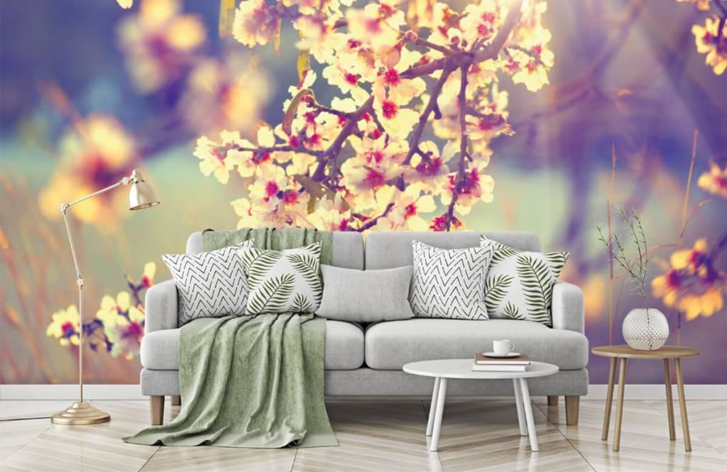 Rosa Blüten - Blühender Baum - Schlafzimmer 1