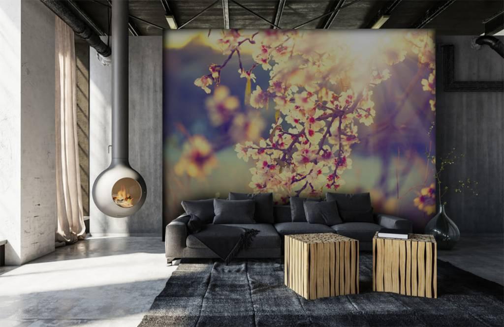 Rosa Blüten - Blühender Baum - Schlafzimmer 7
