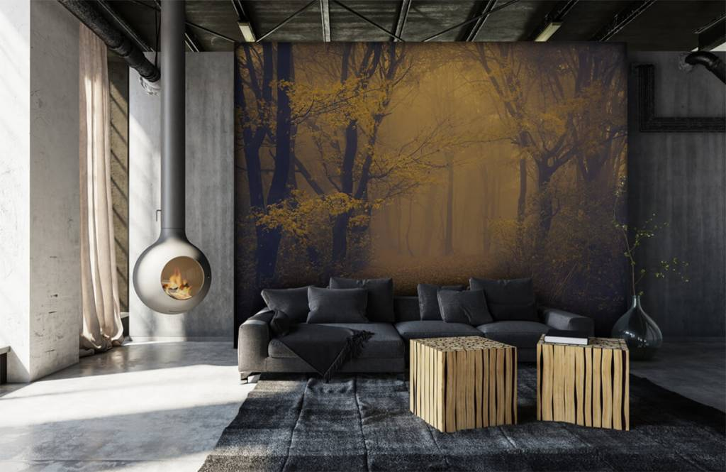 Wald Tapete - Dunkler Wald - Schlafzimmer 1