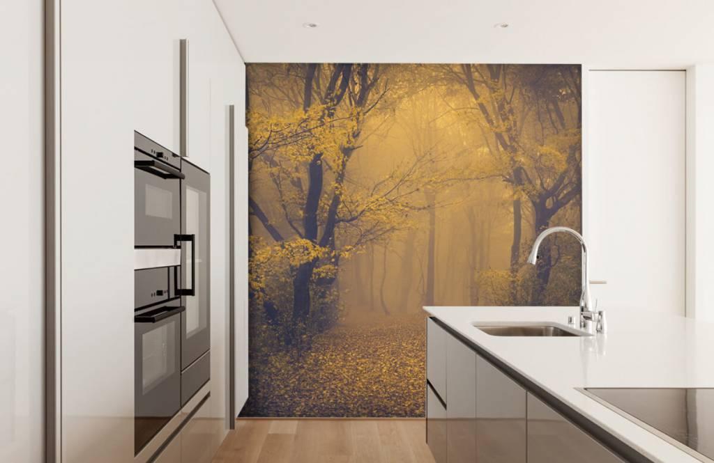 Wald Tapete - Dunkler Wald - Schlafzimmer 4