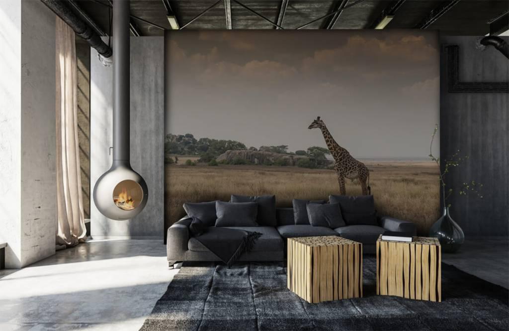Tiere - Giraffe in der Savanne - Schlafzimmer 2