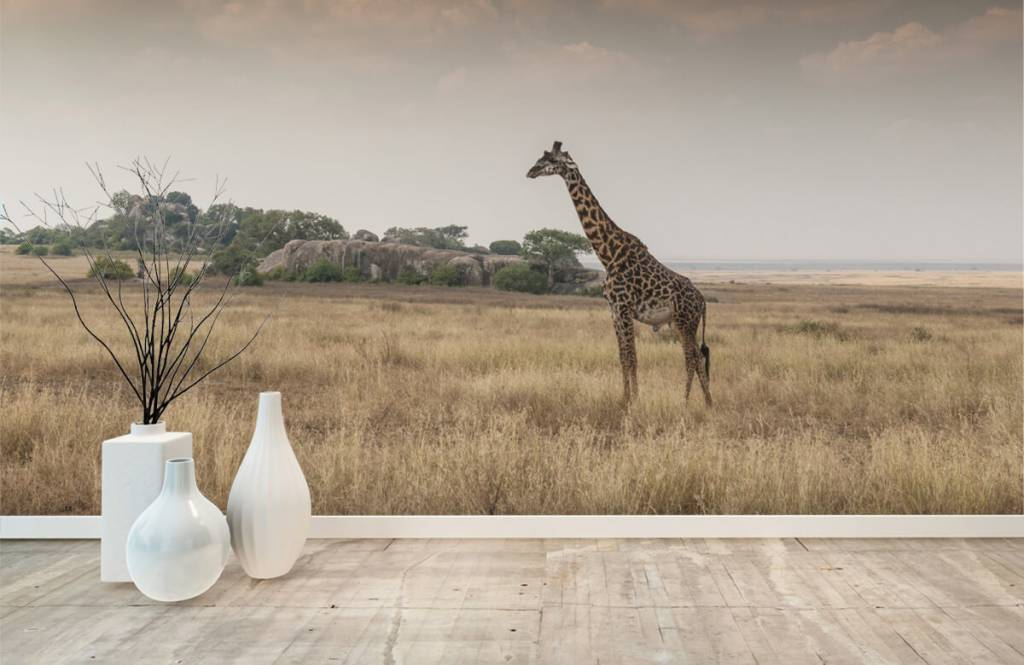 Tiere - Giraffe in der Savanne - Schlafzimmer 4