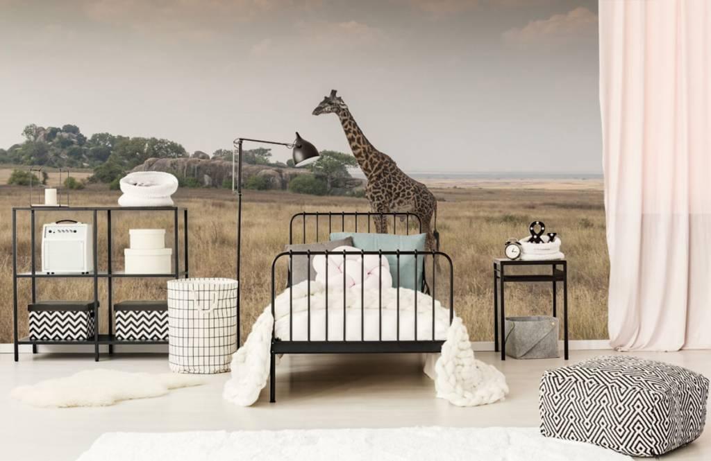 Tiere - Giraffe in der Savanne - Schlafzimmer 7