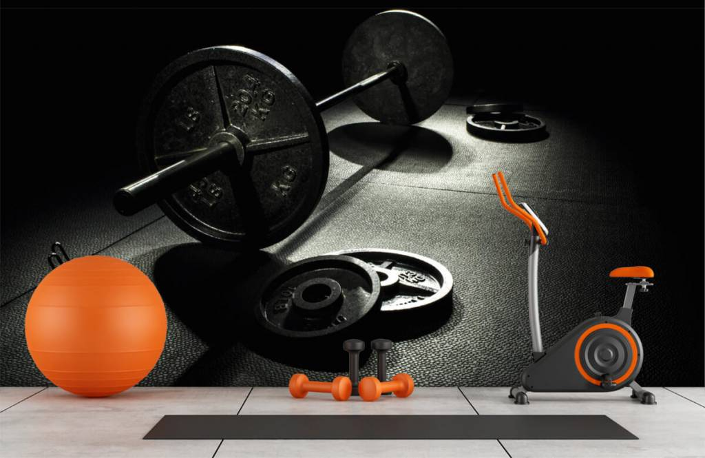 Fitness - Hantel mit Gewichten - Hobbyzimmer 1