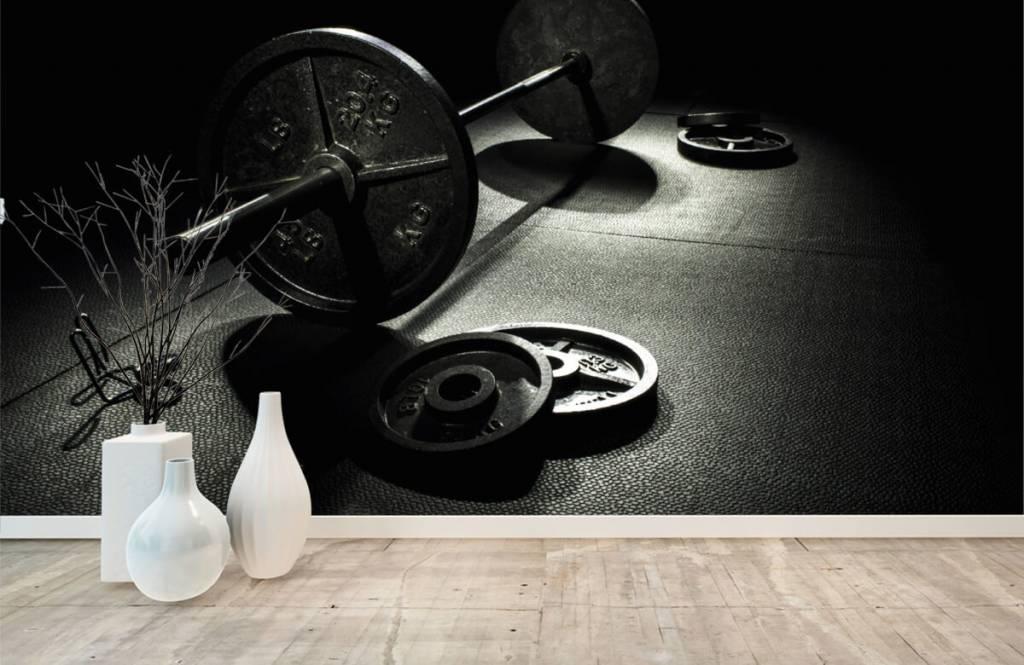 Fitness - Hantel mit Gewichten - Hobbyzimmer 3