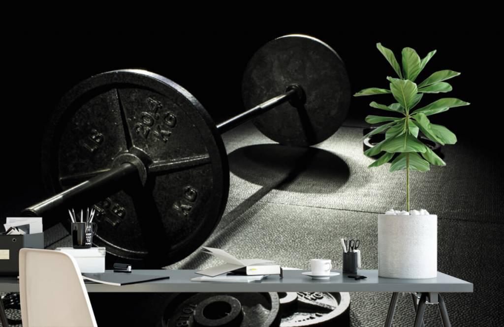 Fitness - Hantel mit Gewichten - Hobbyzimmer 5