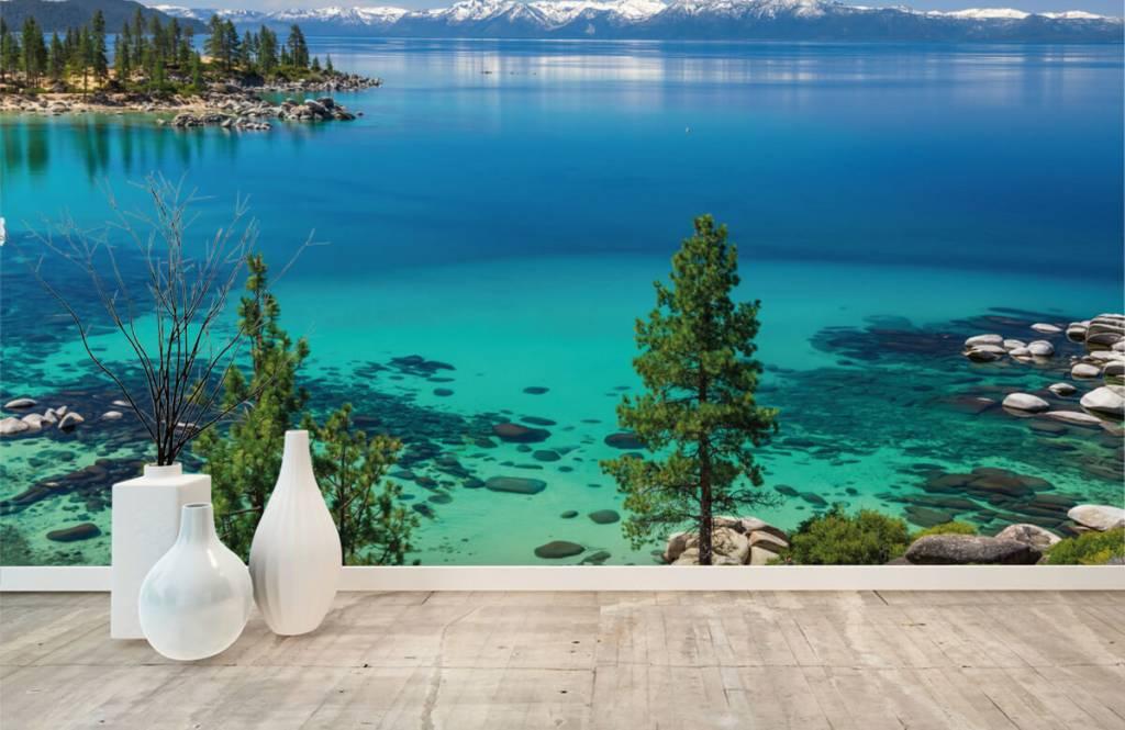 Seen und Gewässer - Klares Meer - Flur 8