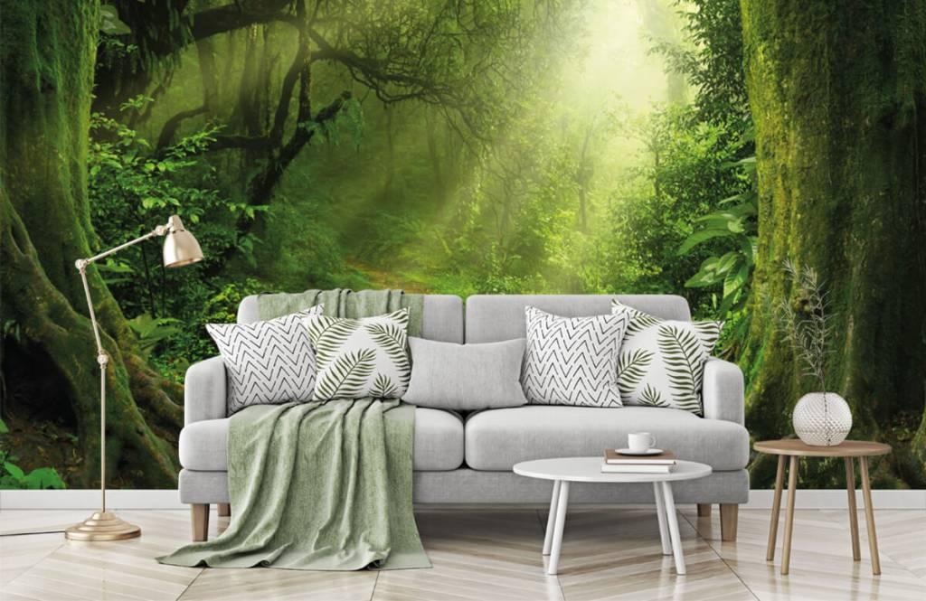 Bäume - Dschungel Sonne - Schlafzimmer 1