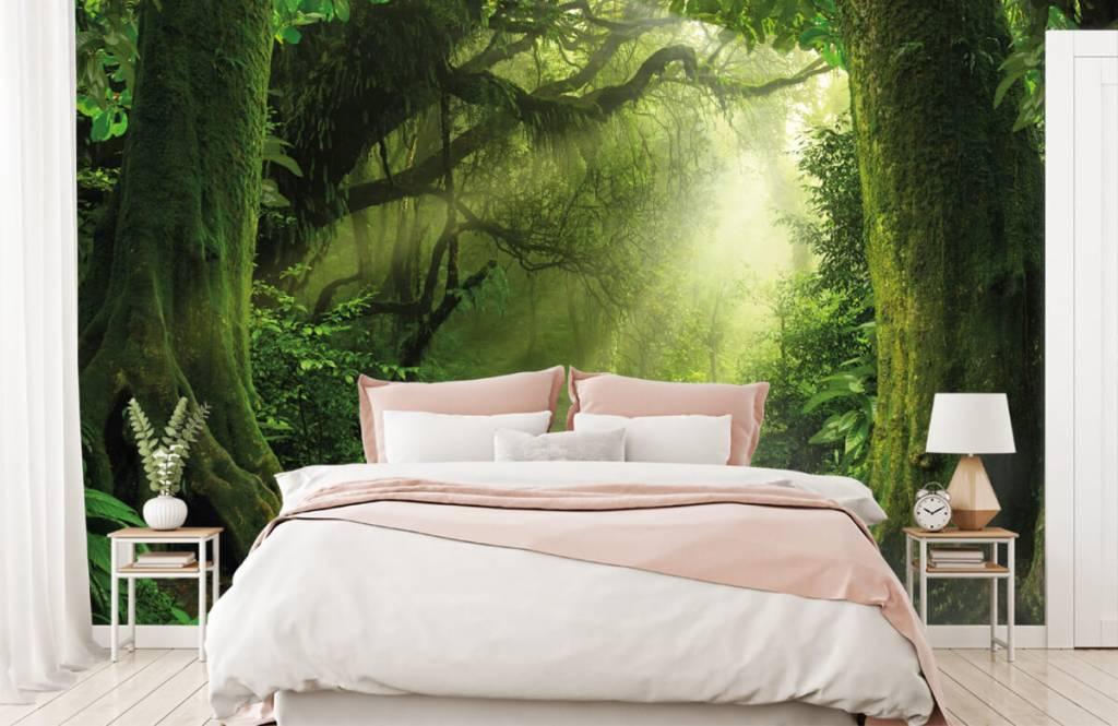 Bäume - Dschungel Sonne - Schlafzimmer 2