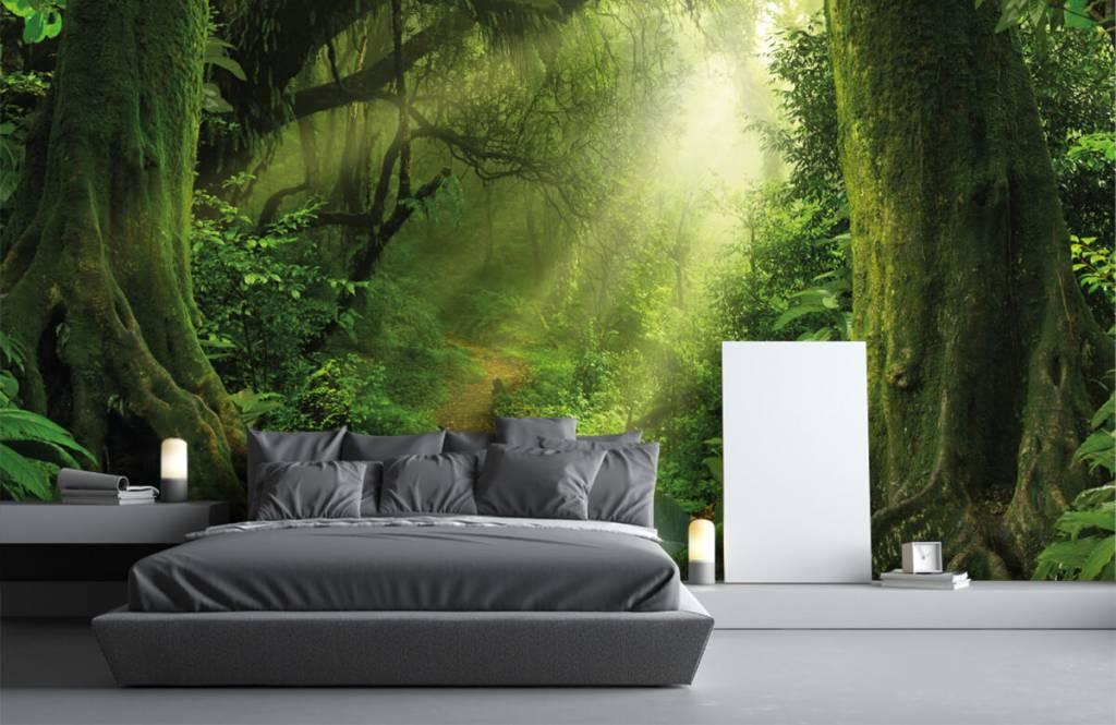 Bäume - Dschungel Sonne - Schlafzimmer 3