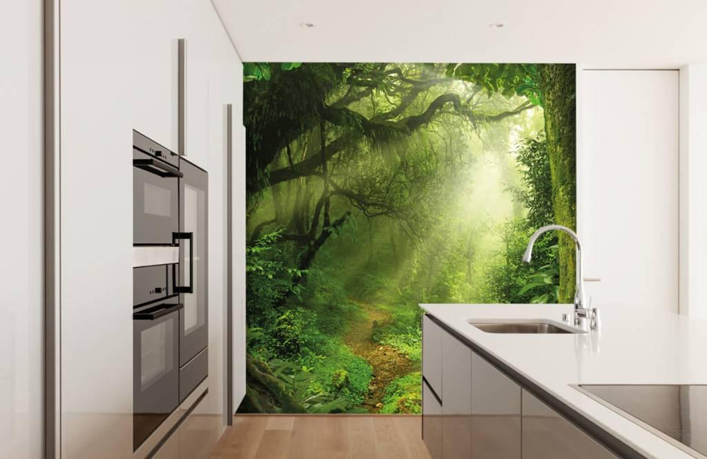 Bäume - Dschungel Sonne - Schlafzimmer 4