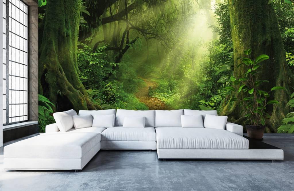 Bäume - Dschungel Sonne - Schlafzimmer 6