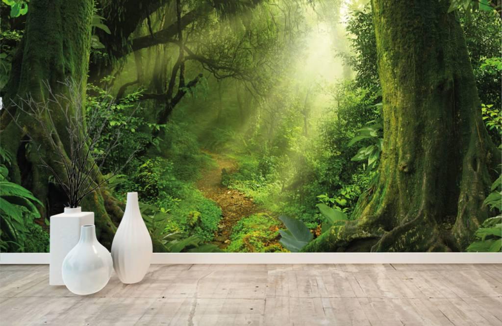 Bäume - Dschungel Sonne - Schlafzimmer 8