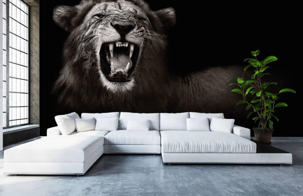 Wilde Tiere - Löwin - Jugendzimmer 1