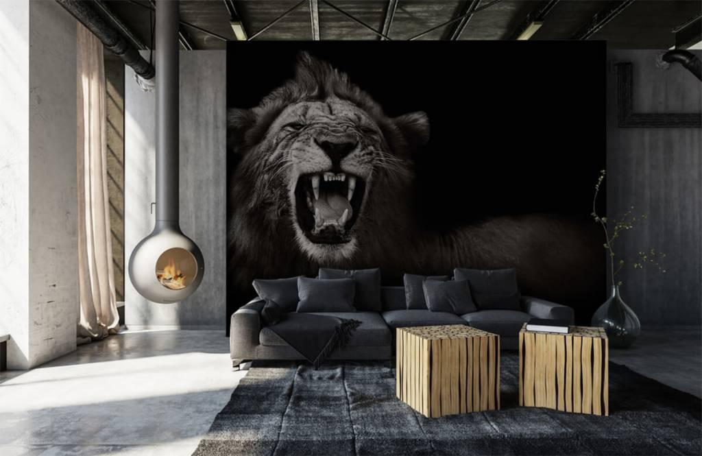 Wilde Tiere - Löwin - Jugendzimmer 6