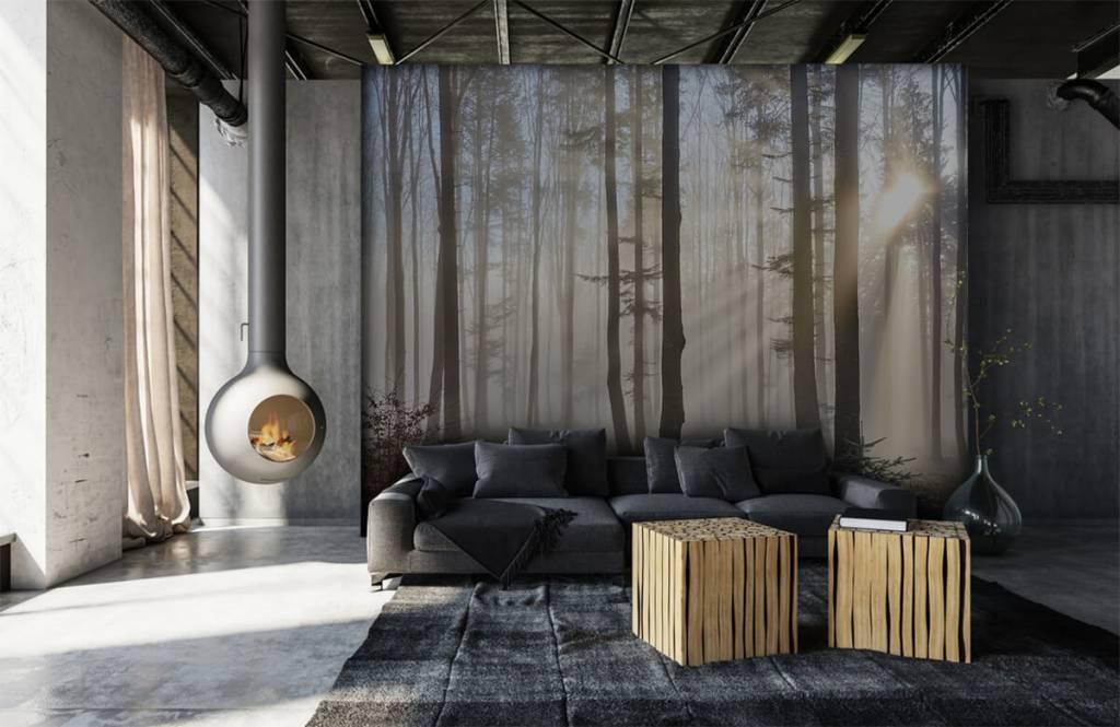 Wald Tapete - Nebliger Wald - Schlafzimmer 6