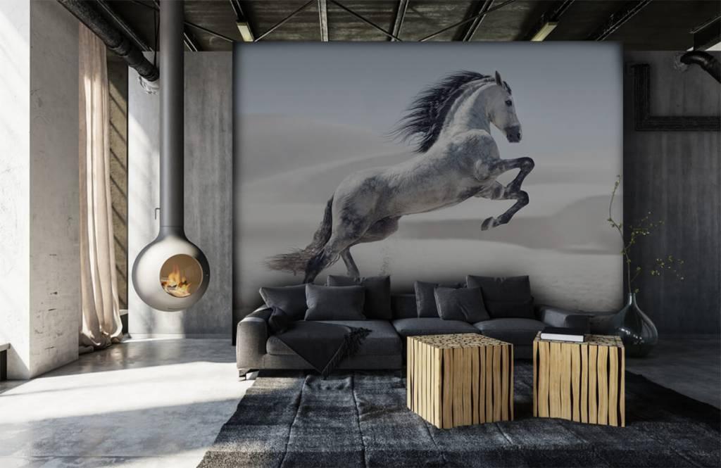 Pferde - Tanzendes Pferd - Kinderzimmer 1