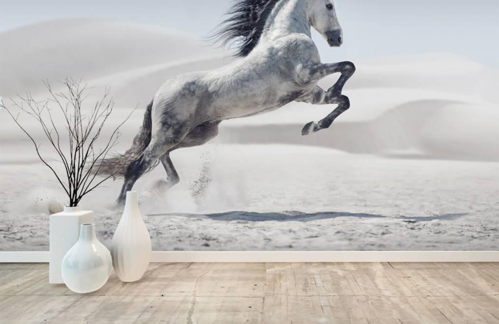 Pferde - Tanzendes Pferd - Kinderzimmer 2