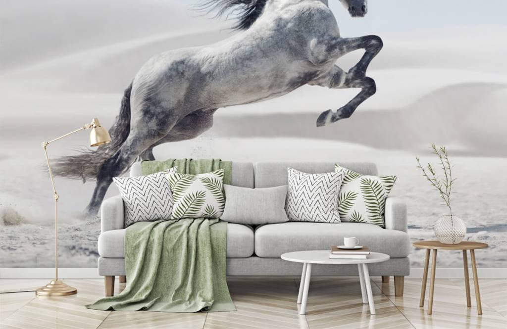 Pferde - Tanzendes Pferd - Kinderzimmer 8