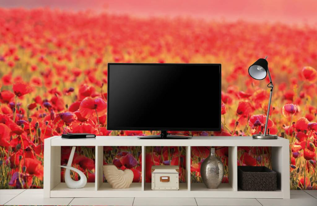 Blumenfelder - Feld mit Mohnblumen - Schlafzimmer 4