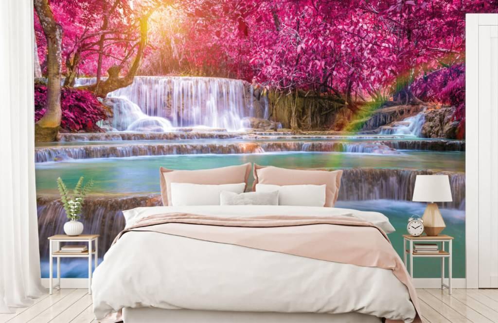Wasserfälle - Wasserfall im Dschungel - Jugendzimmer 1