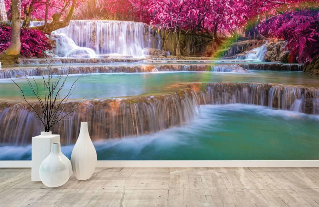Wasserfälle - Wasserfall im Dschungel - Jugendzimmer 8
