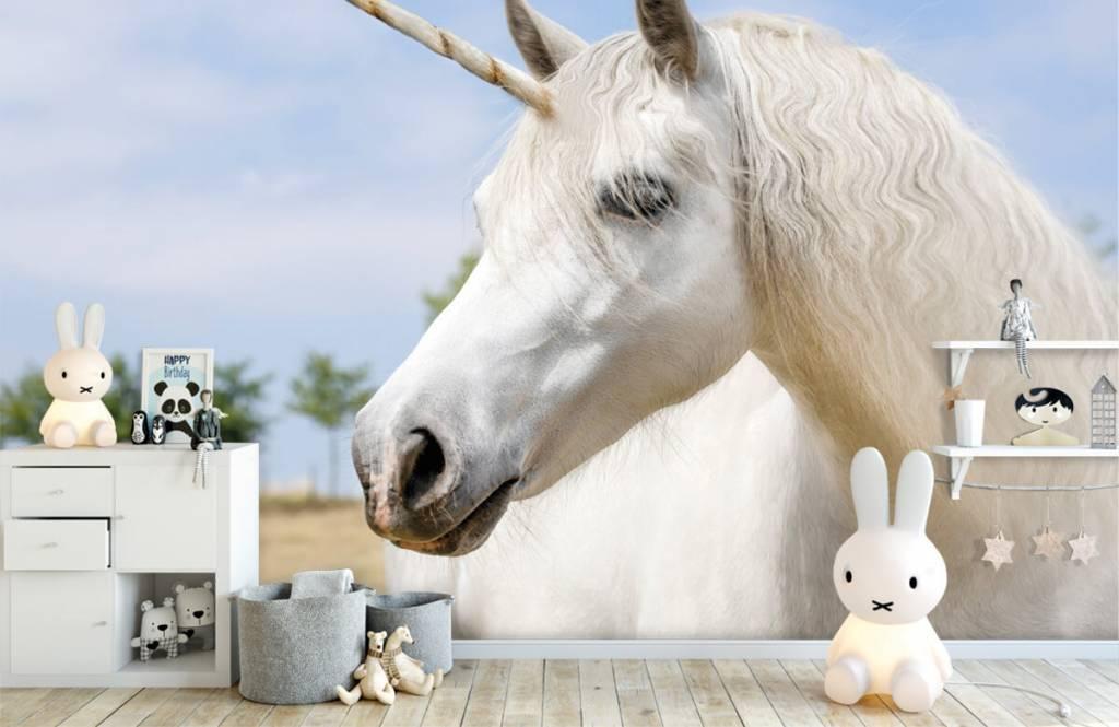 Pferde - Weißes Einhorn - Kinderzimmer 1