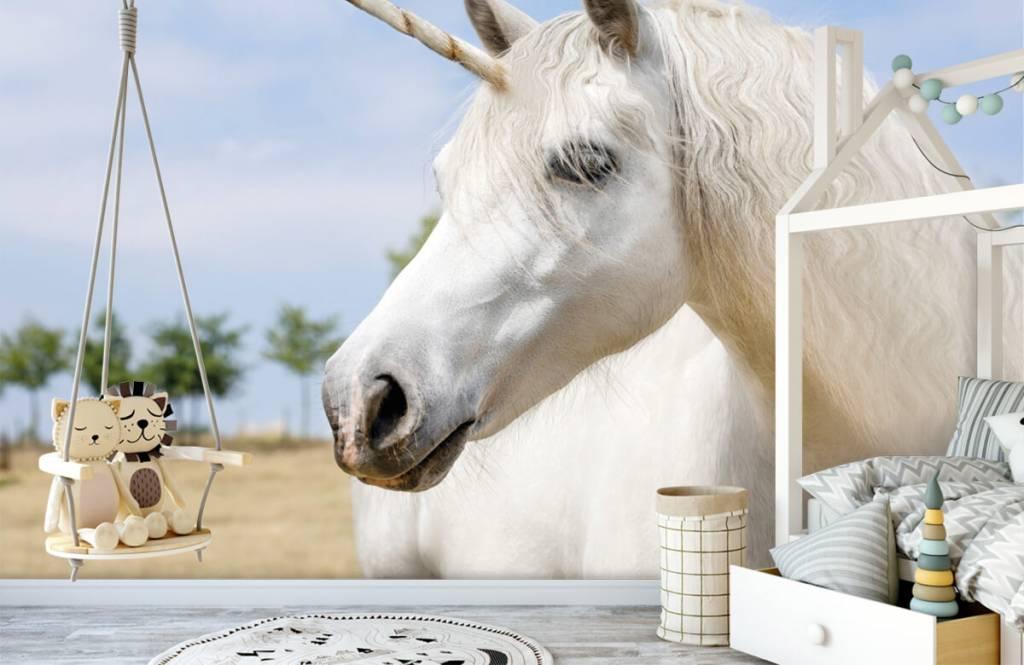 Pferde - Weißes Einhorn - Kinderzimmer 4