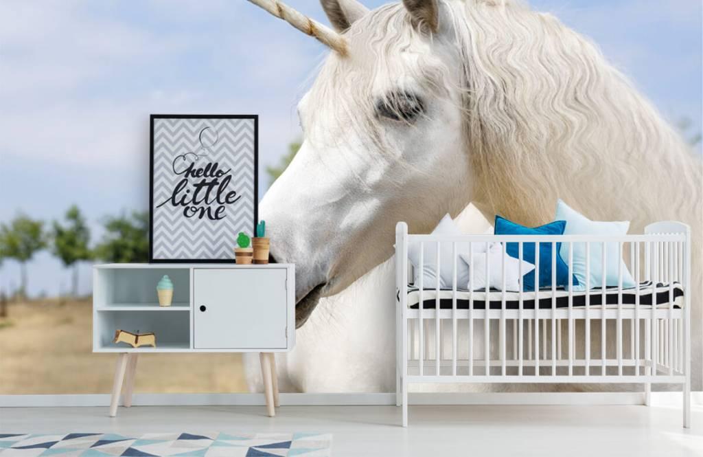 Pferde - Weißes Einhorn - Kinderzimmer 6