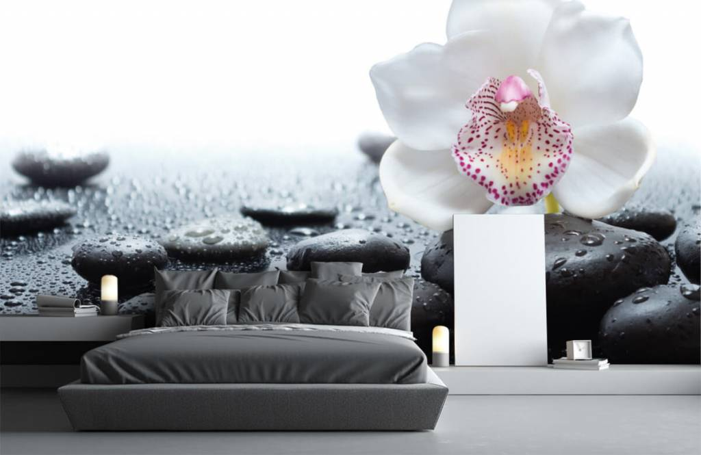 Andere - Weiße Orchidee auf Fototapete - Empfangsbereich 3