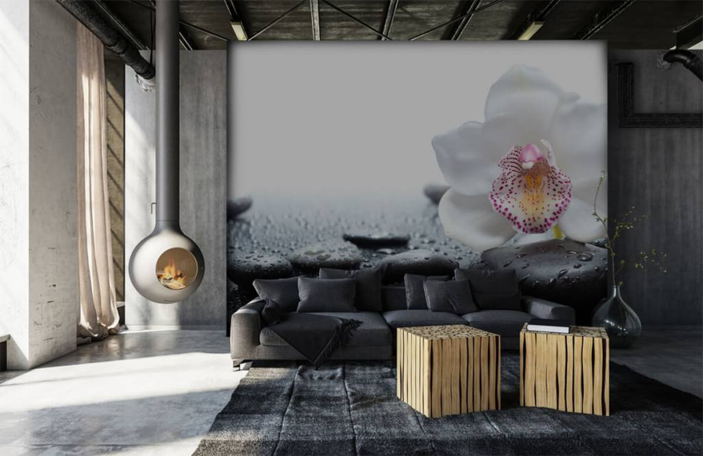 Andere - Weiße Orchidee auf Fototapete - Empfangsbereich 6