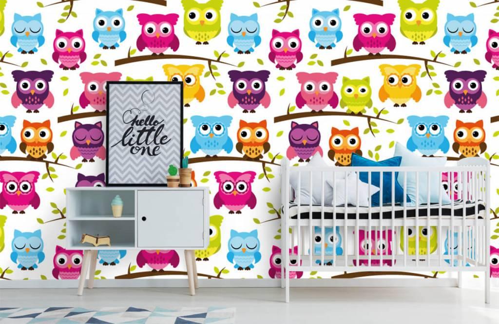 Vogel Tapete - Tapete mit farbigen Eulen - Babyzimmer 1