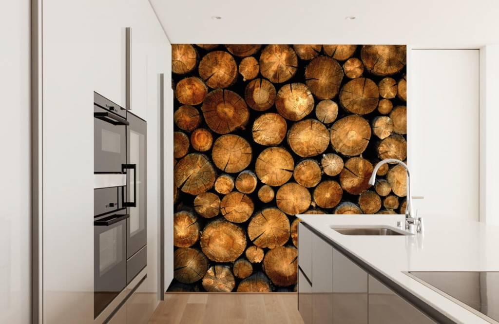 Holz Tapete - abgesägte Bäume - Schlafzimmer 1