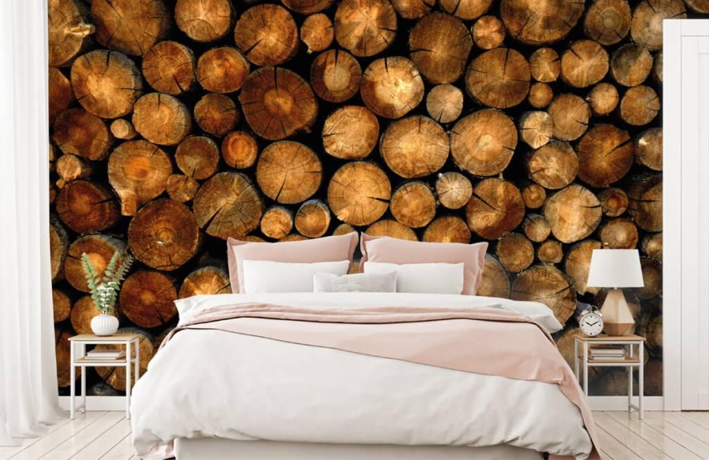 Holz Tapete - abgesägte Bäume - Schlafzimmer 2