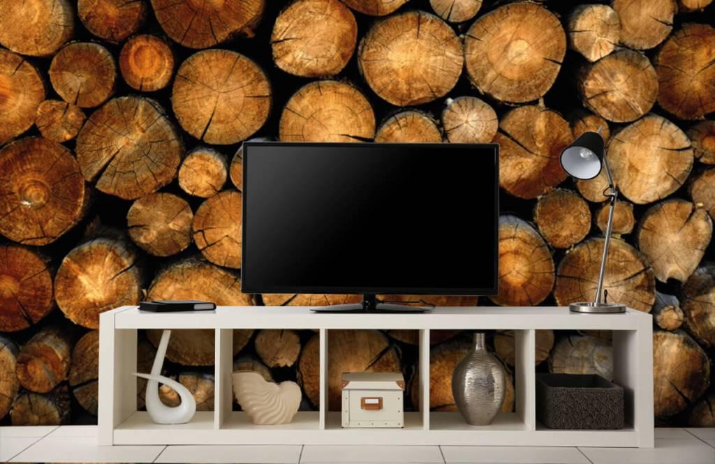 Holz Tapete - abgesägte Bäume - Schlafzimmer 4