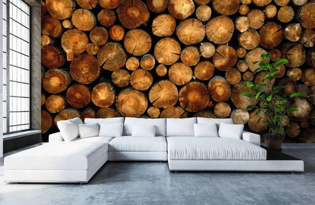 Holz Tapete - abgesägte Bäume - Schlafzimmer 5