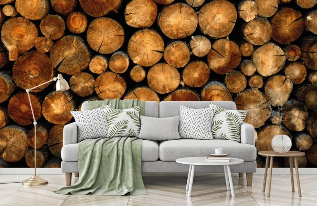 Holz Tapete - abgesägte Bäume - Schlafzimmer 7